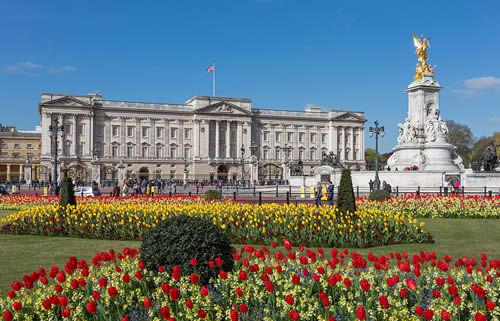 londres-buckingham-palace-from-gardens